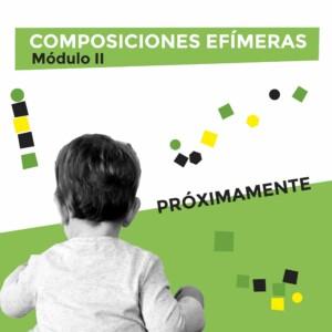 COMPOSICIONES EFÍMERAS (II)